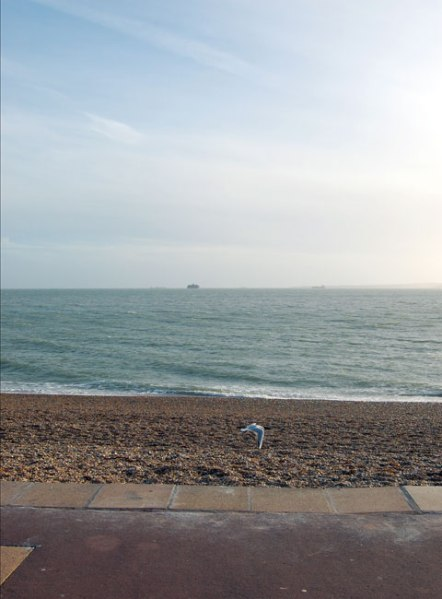 cc72webseafront27.1.13