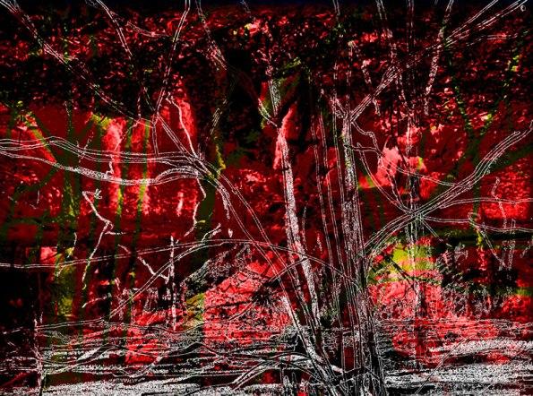 redcropstump72web